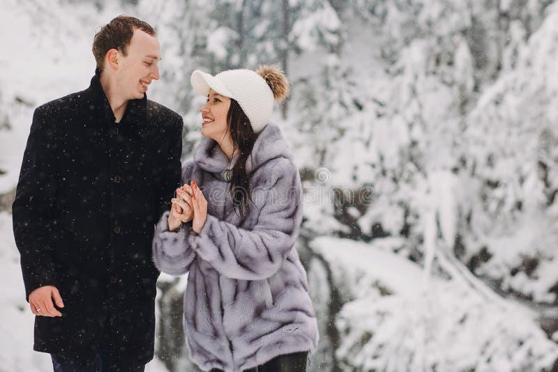 Pares elegantes que llevan a cabo las manos y que caminan en mountai nevoso del invierno imagen de archivo libre de regalías