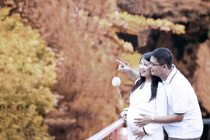 Pares embarazados felices en otoño imagenes de archivo