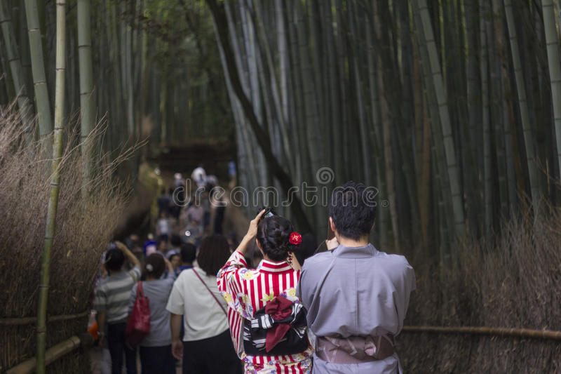 Pares en el kimono que toma la fotografía en el bosque de bambú fotografía de archivo libre de regalías