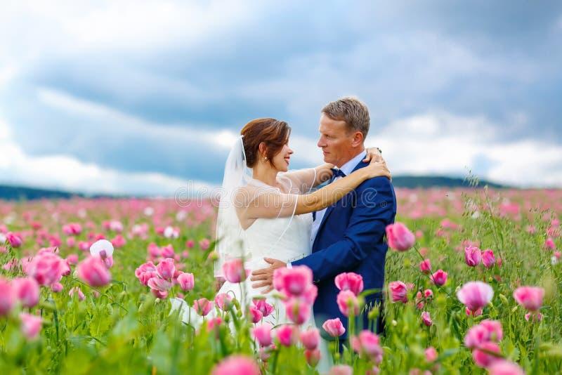 Pares felices de la boda en campo rosado de la amapola foto de archivo libre de regalías