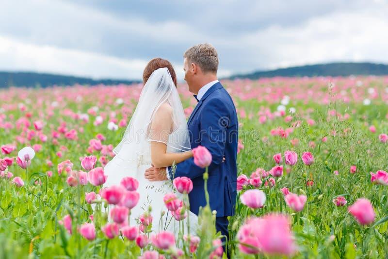 Pares felices de la boda en campo rosado de la amapola fotos de archivo libres de regalías