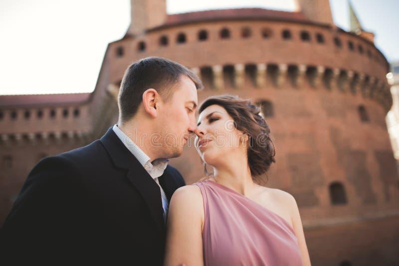 Pares felices de la boda, novio, novia con el vestido rosado que abraza y que se sonríe en las paredes del fondo en castillo imágenes de archivo libres de regalías