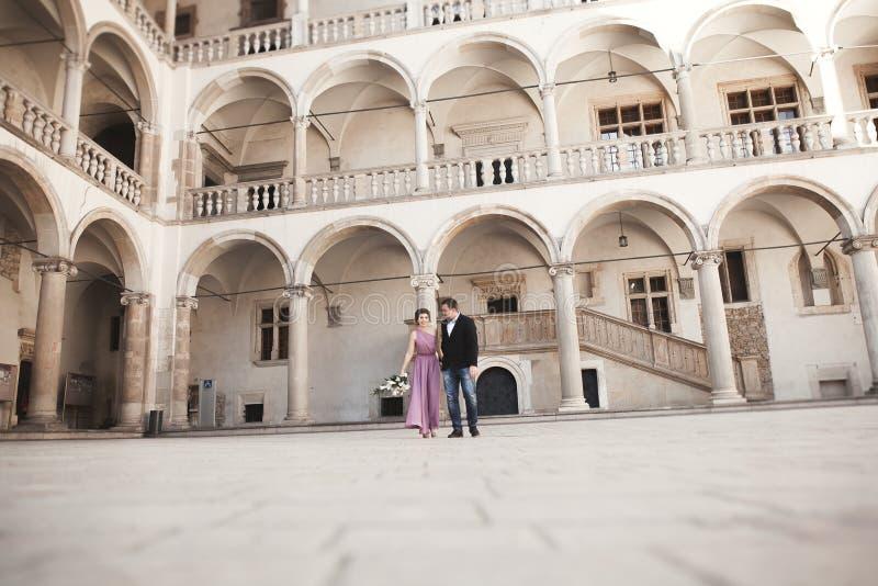 Pares felices de la boda, novio, novia con el vestido rosado que abraza y que se sonríe en las paredes del fondo en castillo fotografía de archivo libre de regalías