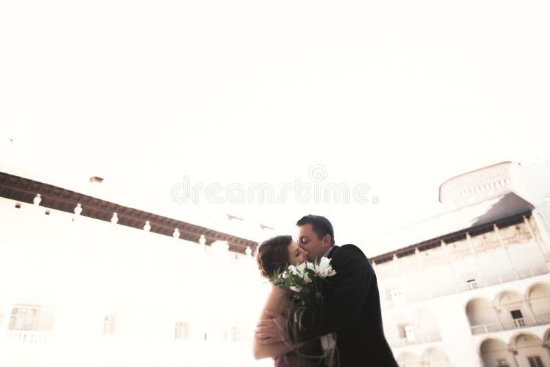 Pares felices de la boda, novio, novia con el vestido rosado que abraza y que se sonríe en las paredes del fondo en castillo fotografía de archivo
