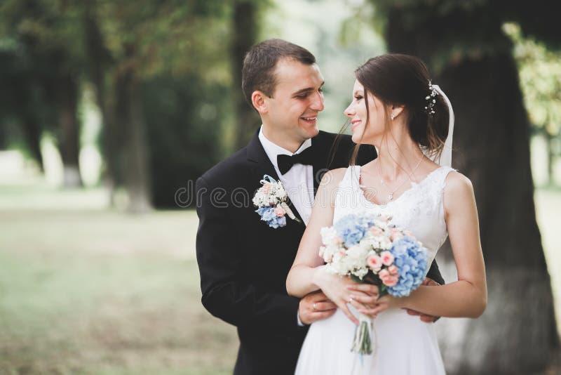 Pares felices de la boda que caminan en un parque bot?nico imagenes de archivo