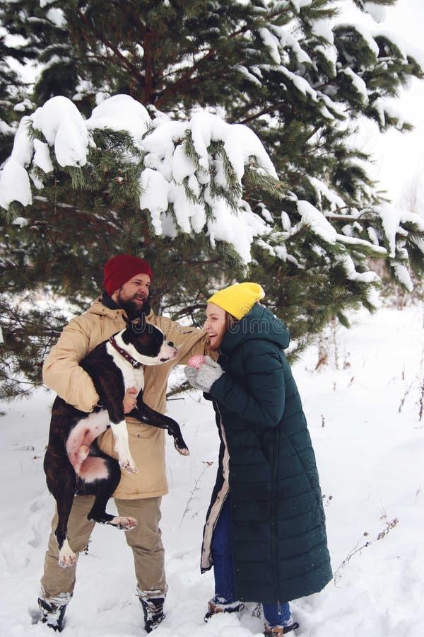 Pares felices en el amor que se divierte en la nieve con su perro del bebé fotos de archivo