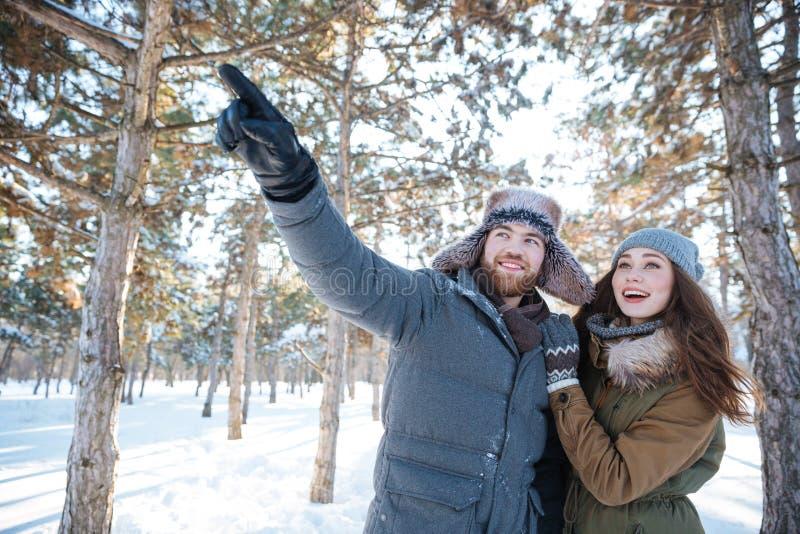 Pares felices que destacan y que miran en parque del invierno fotografía de archivo libre de regalías