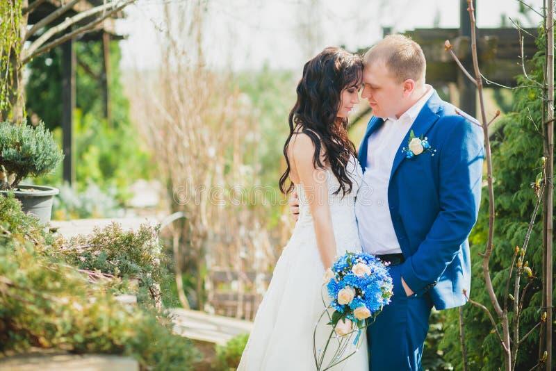 Pares felizes do casamento que guardam as mãos foto de stock