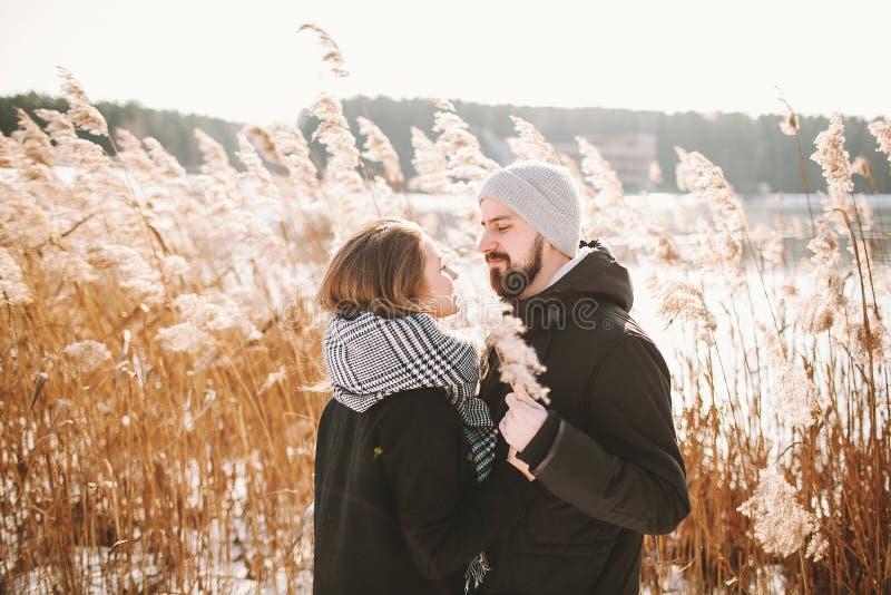 Pares felizes do moderno que abraçam perto do lago e dos juncos do inverno imagens de stock royalty free