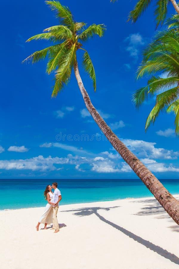 Pares felizes loving novos que beijam na praia tropical com palma t imagens de stock