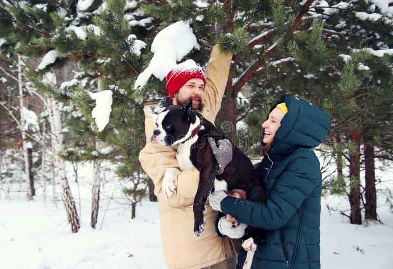 Pares felizes no amor que tem o divertimento na neve com seu cão do bebê fotos de stock