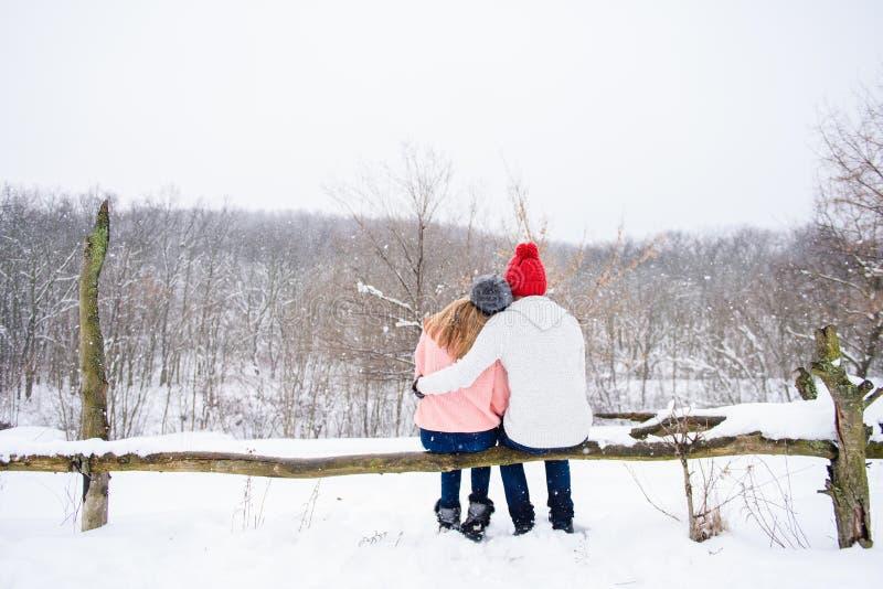 Pares felizes no fundo da neve da parte traseira foto de stock royalty free