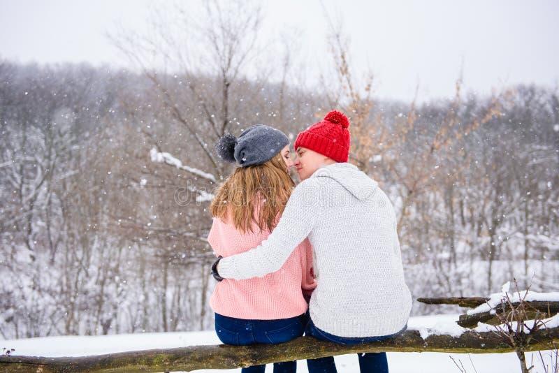 Pares felizes no fundo da neve da parte traseira imagens de stock