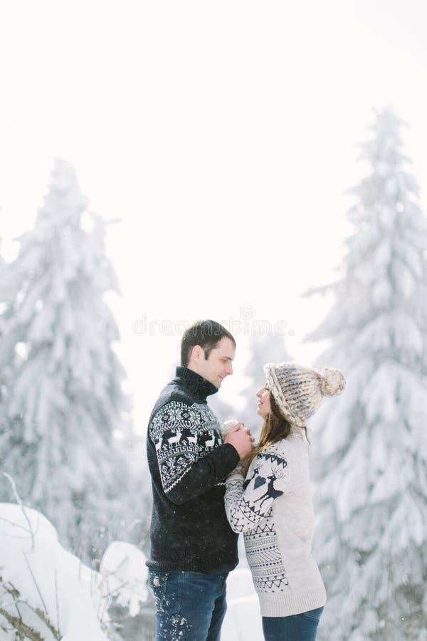 Pares felizes perto de uma árvore de Natal Noite de Natal imagem de stock royalty free