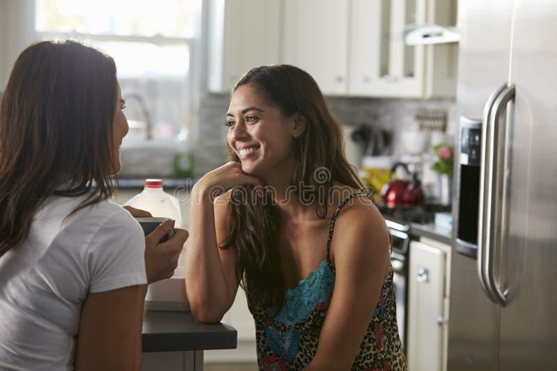 Pares femeninos gay en su 20s que habla en su cocina imagen de archivo