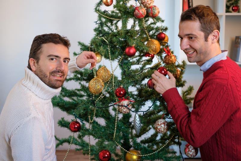 Pares gay de los hombres felices foto de archivo libre de regalías