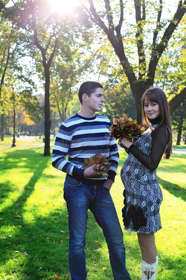 Pares grávidos dos jovens no parque do outono fotos de stock royalty free