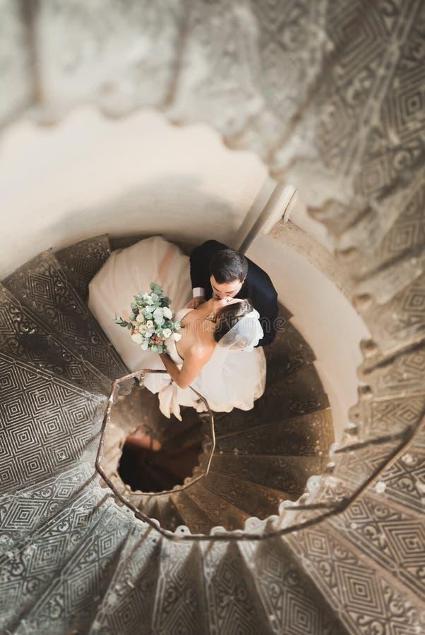 Pares hermosos, apasionados de la boda que presentan en las escaleras foto de archivo