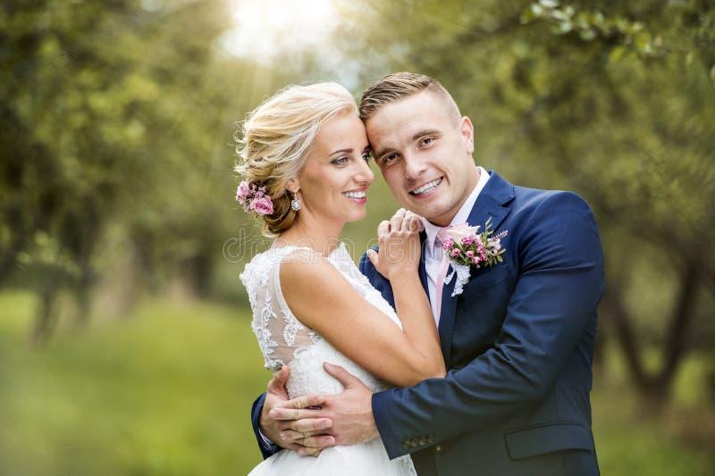 Pares hermosos de la boda imagenes de archivo
