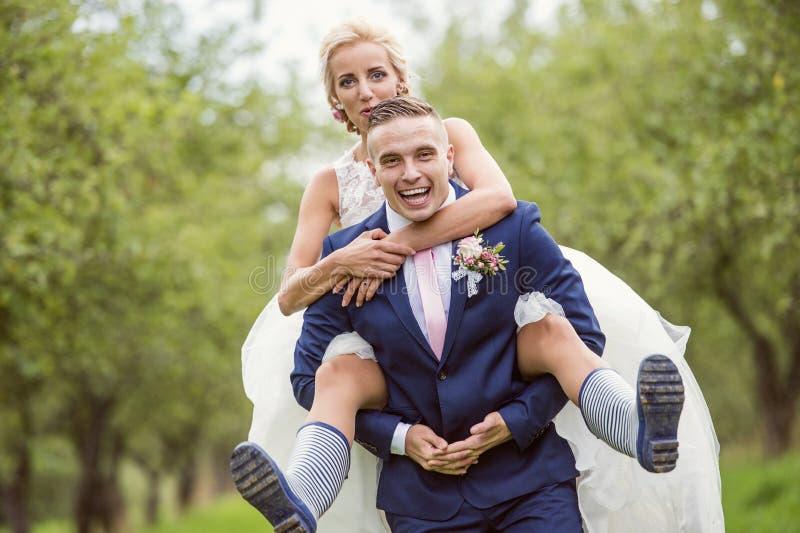 Pares hermosos de la boda fotografía de archivo