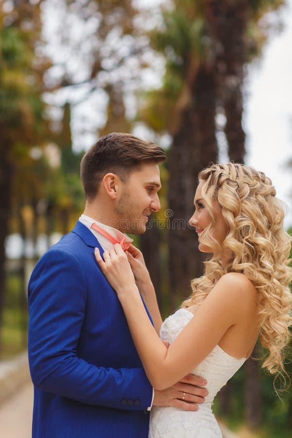 Pares hermosos de la boda, novia feliz y novio fotografía de archivo libre de regalías