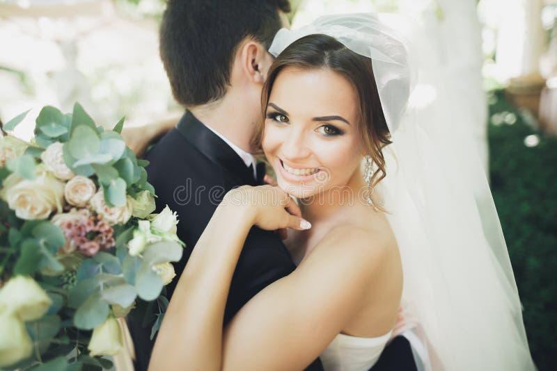 Pares hermosos elegantes de los recienes casados felices en su día de boda, cierre encima del retrato imagenes de archivo