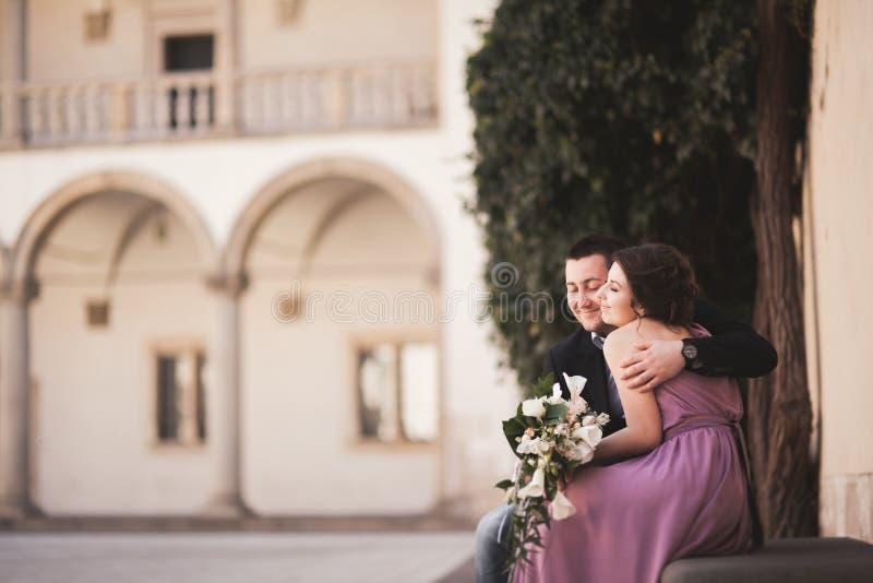 Pares hermosos, hombre, muchacha con el vestido rosado largo que presenta en castillo viejo cerca de columnas Kraków Vavel foto de archivo libre de regalías