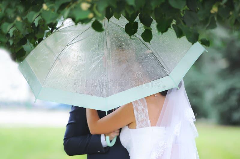 Pares hermosos románticos de la boda que abrazan debajo del paraguas elegante fotos de archivo libres de regalías