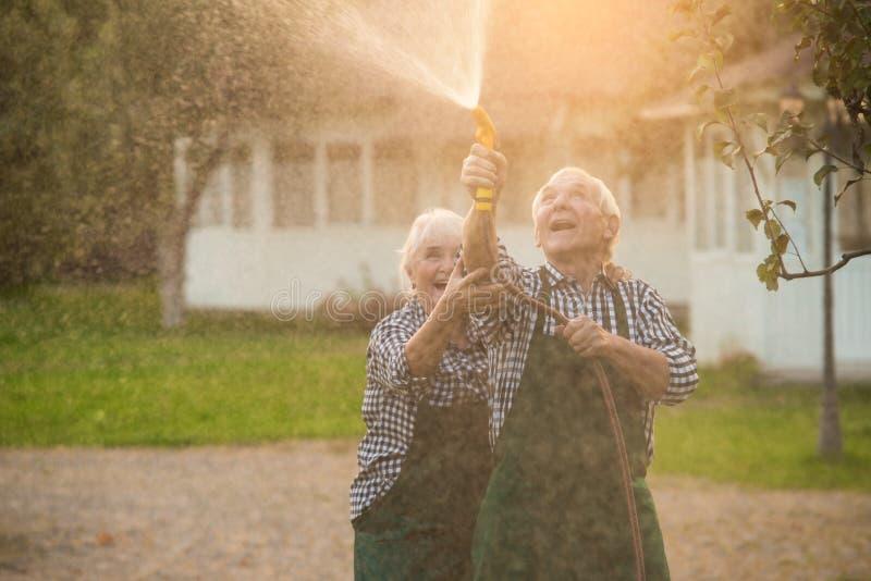 Pares idosos com mangueira de jardim imagens de stock