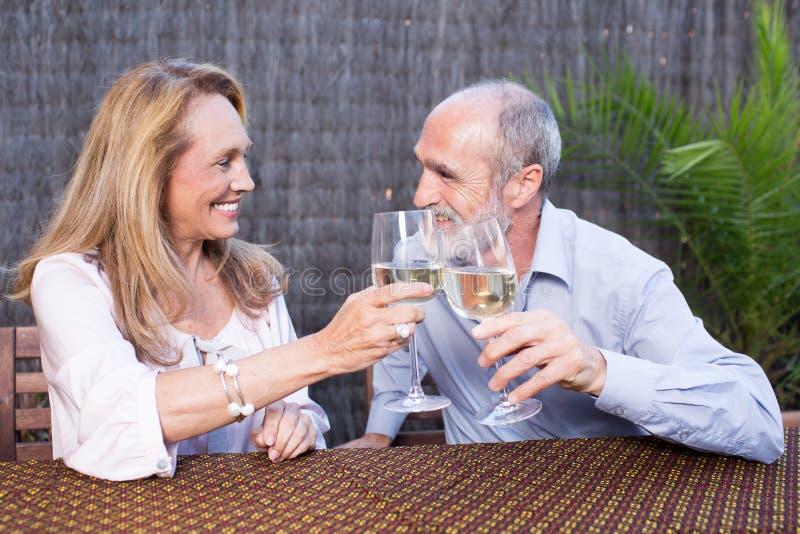 Pares idosos com vinho imagens de stock