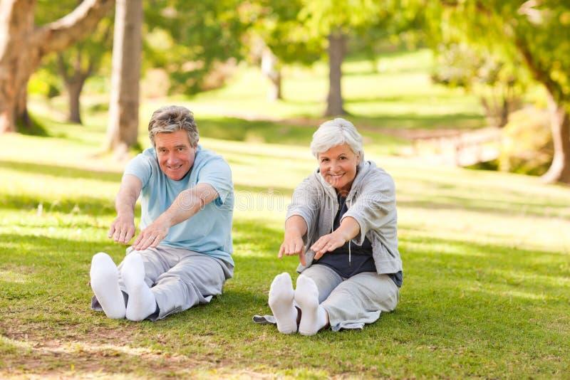 Pares idosos que fazem seus estiramentos no parque fotografia de stock royalty free