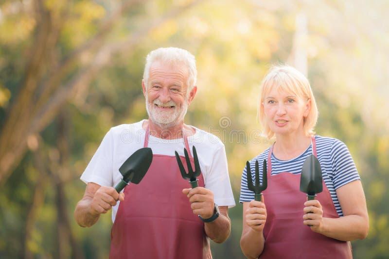 Pares idosos que guardam o equipamento de jardim no parque no por do sol Amor da pessoa idosa dos pares do conceito imagens de stock