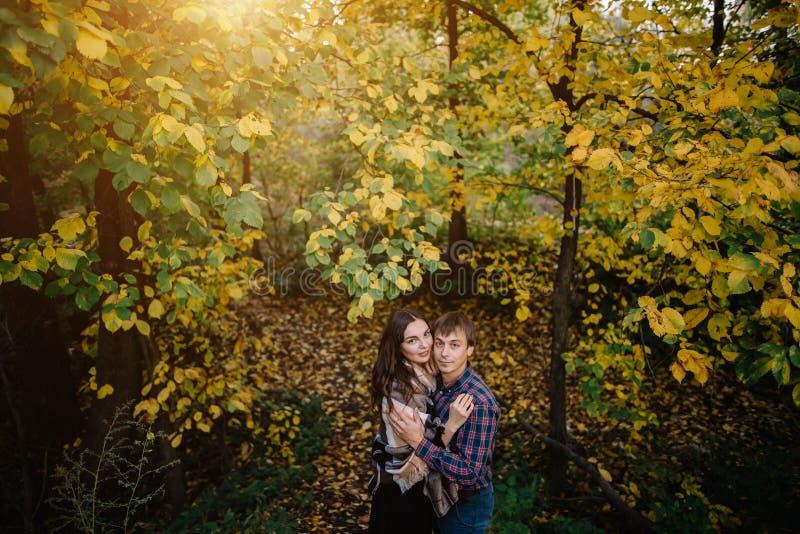Pares jovenes hermosos en el bosque al lado de árboles con las hojas amarilleadas imagen de archivo