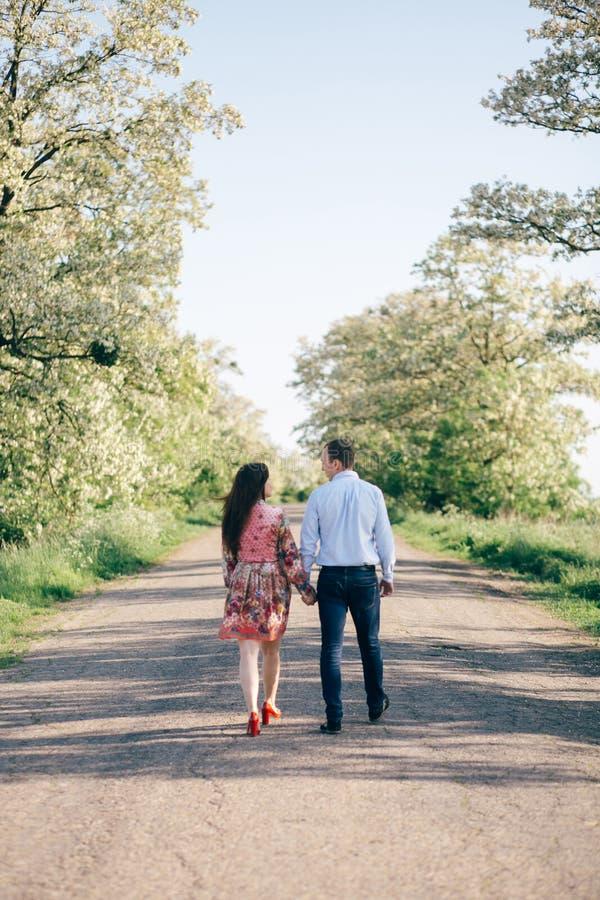Pares jovenes hermosos que llevan a cabo las manos y que caminan en el camino en sol entre campo y árboles de la primavera Famili imagen de archivo libre de regalías