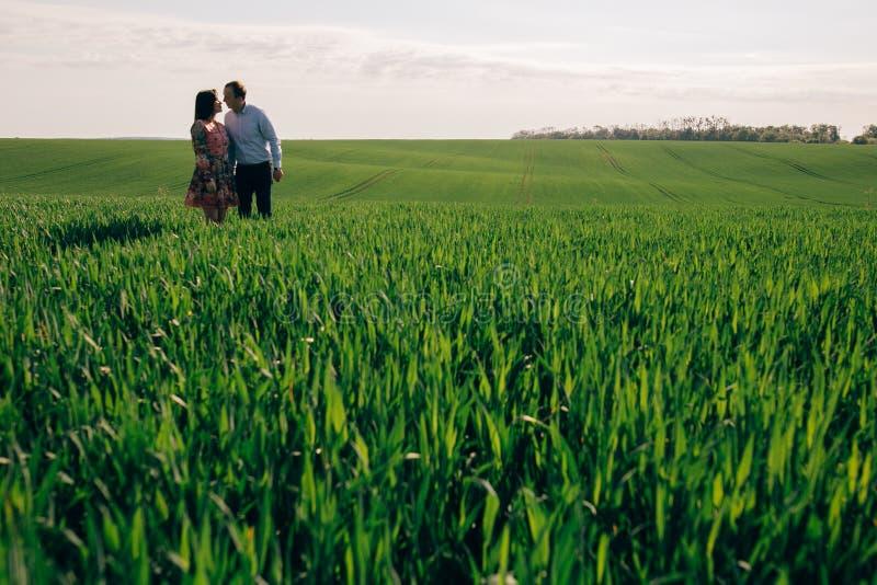Pares jovenes hermosos que llevan a cabo las manos y que caminan en sol en prado de la primavera Familia feliz que abraza en camp imagenes de archivo