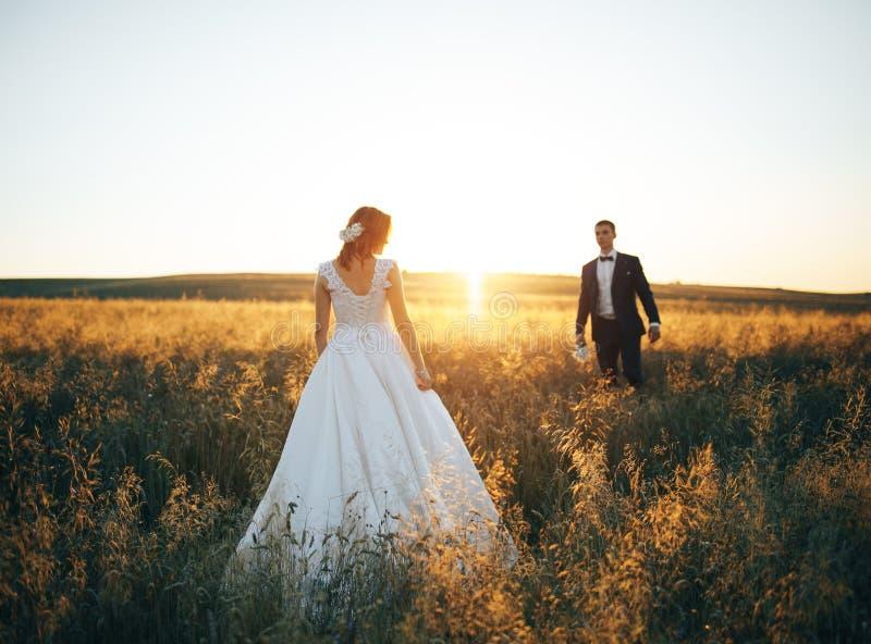 Pares jovenes que caminan en el campo de trigo en la puesta del sol foto de archivo libre de regalías