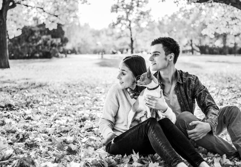 Pares jovenes que se sientan al aire libre en parque del otoño con el perro fotos de archivo
