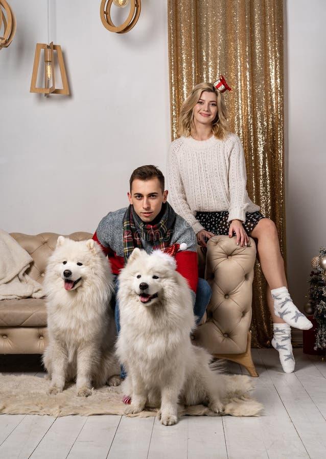 Pares jovenes que se sientan en el sofá y que presentan con dos perros blancos fotografía de archivo libre de regalías