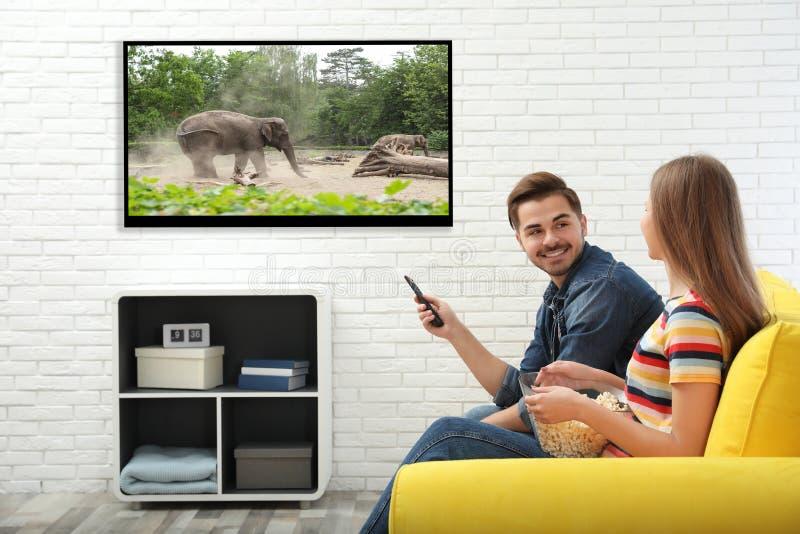 Pares jovenes que ven la TV en el sofá fotos de archivo libres de regalías