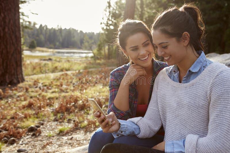 Pares lésbicas felizes usando o smartphone no campo imagens de stock