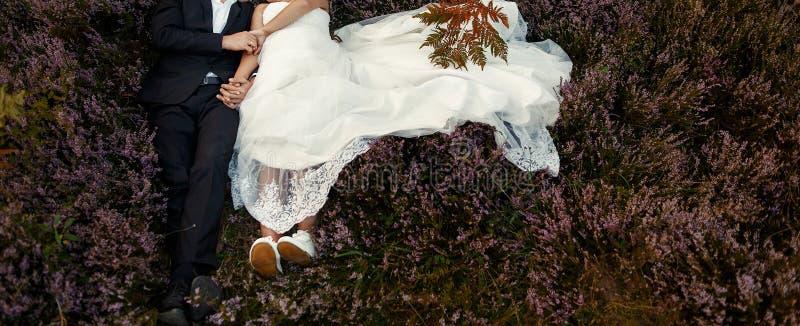 Pares lindos do casamento que abraçam na luz solar que encontra-se na urze m fotografia de stock royalty free