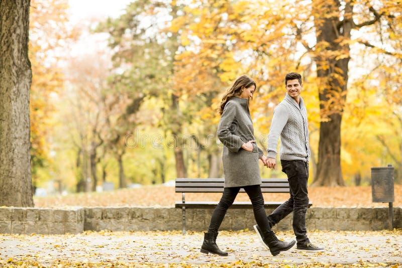Pares Loving no parque do outono foto de stock royalty free
