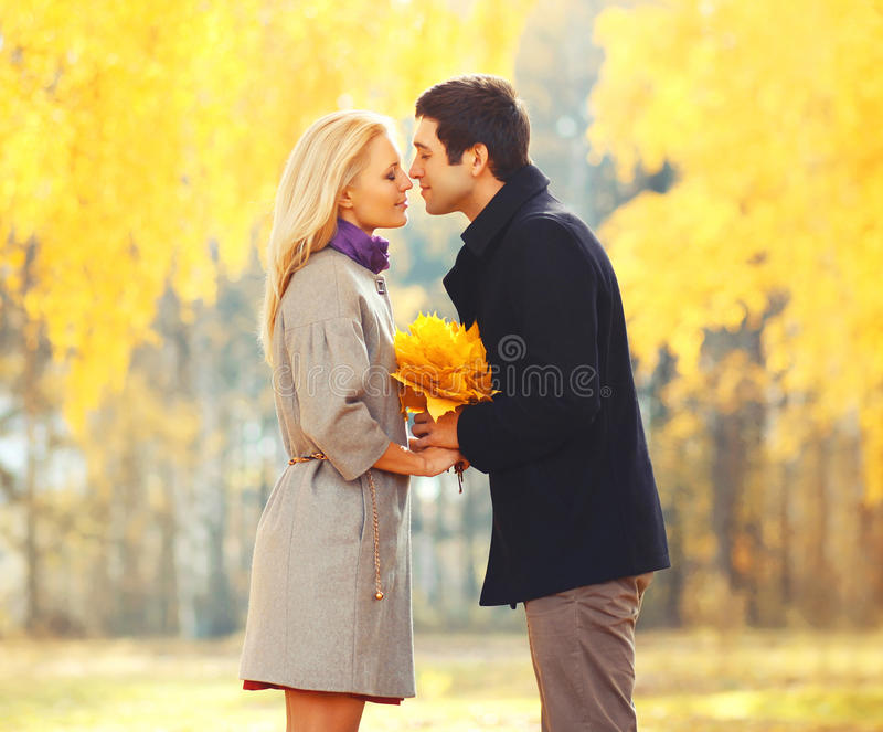 Pares loving novos do retrato que beijam com as folhas de bordo amarelas no dia ensolarado do outono imagem de stock royalty free