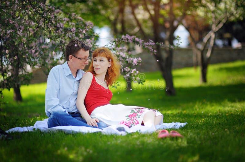Pares loving novos que sentam-se no parque na grama na mola imagem de stock
