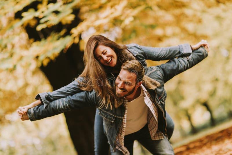 Pares loving novos que têm o divertimento no parque do outono foto de stock royalty free