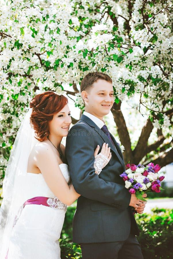 Pares loving sob o dia de mola de florescência dos ramos Homem novo e mulher morenos adultos que beijam na maçã fresca da flor fotografia de stock royalty free