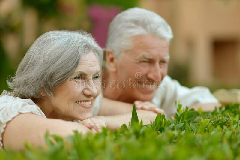 Pares maduros no amor imagens de stock royalty free