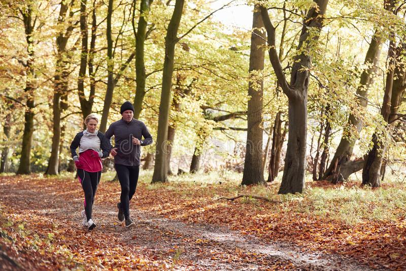 Pares maduros que corren a través de Autumn Woodland Together foto de archivo