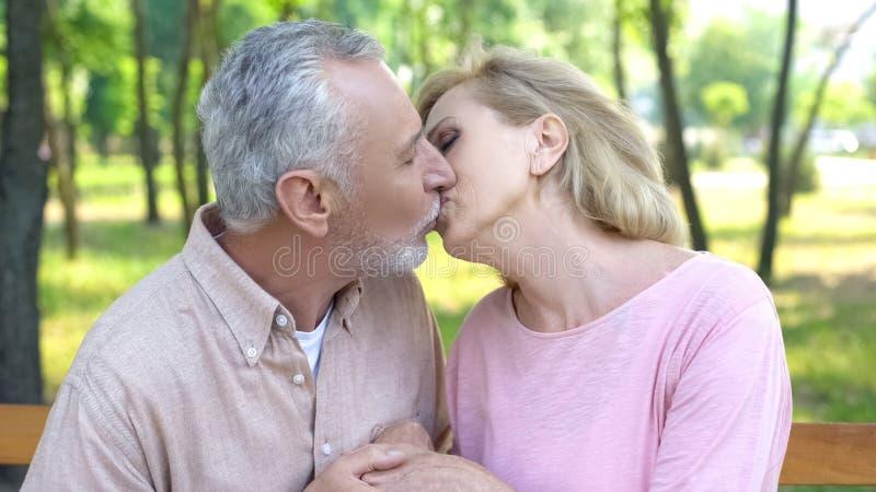 Pares maduros que se besan en parque, matrimonio feliz, amor fuerte y cuidado para toda la vida fotos de archivo libres de regalías