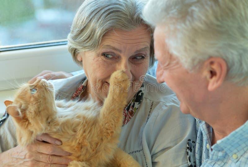 Pares mais velhos com gato imagens de stock